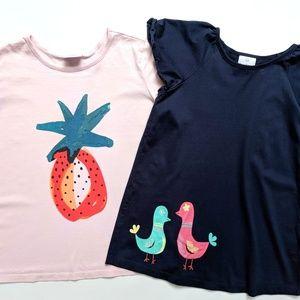 Hanna Andersson Girls Birds Pineapple Tee Lot